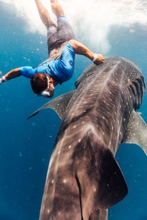 Alex and Whale Shark