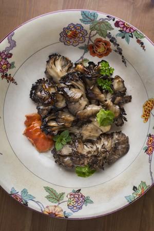 Foraging Fall Mushrooms